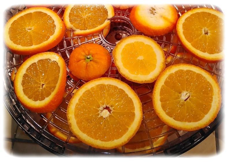 Dried orange 1